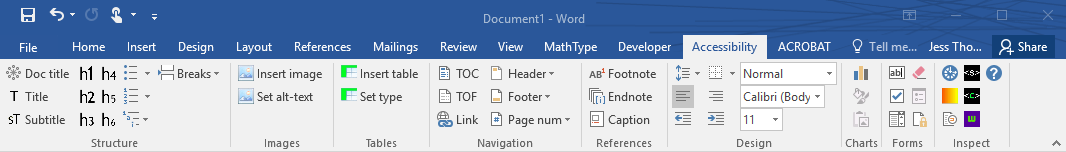 screenshot of document accessibility toolbar in Word